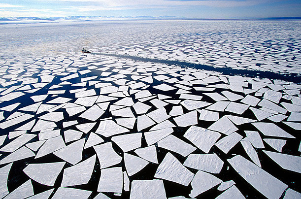 Increased temperatures resulting from a warming climate will cause an increase in sea ice melt.